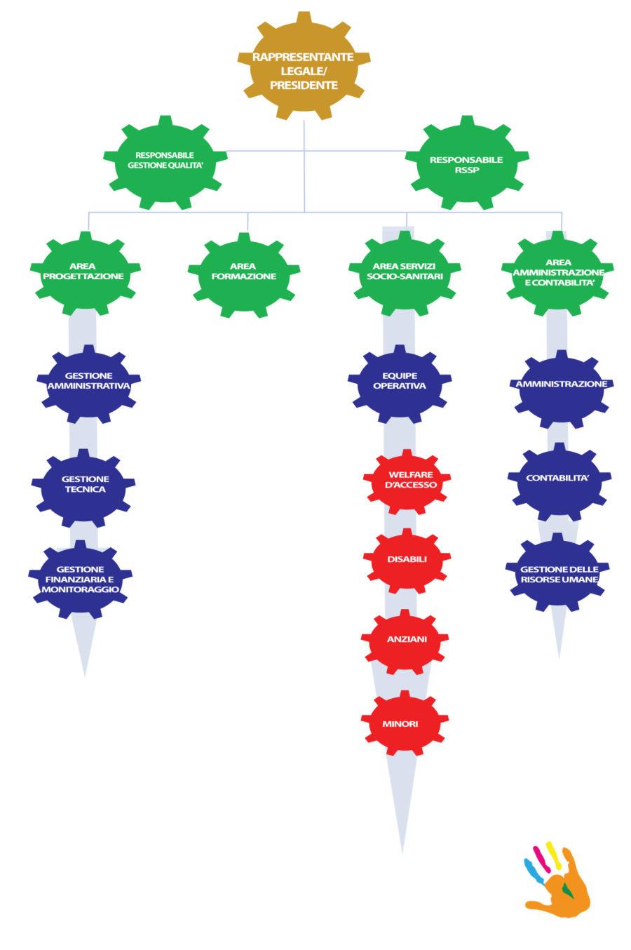 organigramma cooperativa